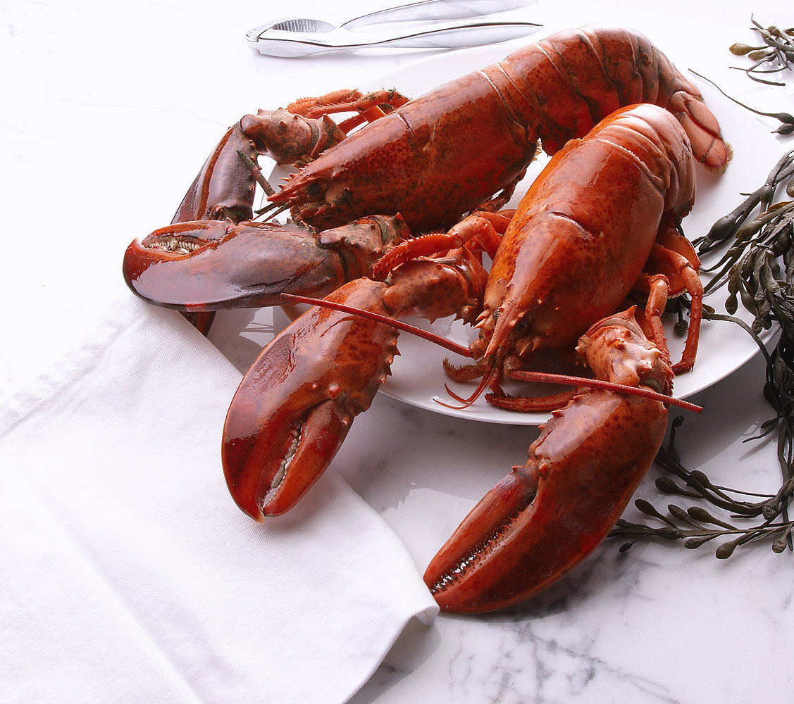 Red Productions Product & Still Life Photography The Food Emporium Lobster